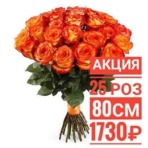 "25 роз ""Хай Меджик"""