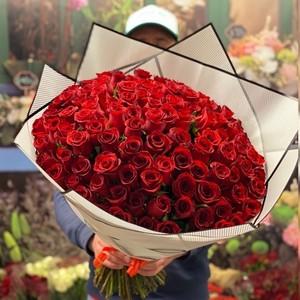 101 роза 50см Premium №РС-135 в оформлении.