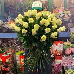 51 роза 80см Эквадор Premium №РС-120