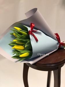 Тюльпаны Т-01