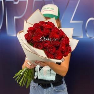 25 роз Голландия Premium в оформлении №РС-090 Роза 50см.