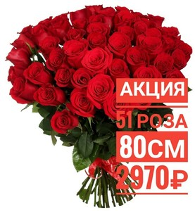 51 красная роза 80 см крупный бутон. По Вашему желанию цвет может быть изменён.
