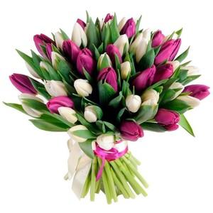 Букет тюльпанов 51 шт. в оформлении лента