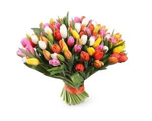 Букет тюльпанов микс 55 шт. в оформлении лента