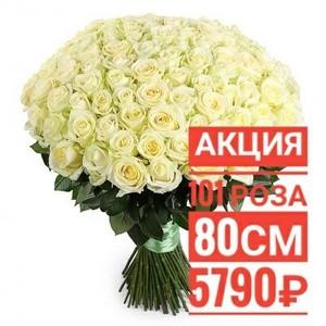 """101 роза """"Мондиаль"""" 80 см крупный бутон. По Вашему желанию цвет может быть изменён."""