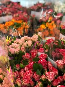 Роза кустовая микс 60 см. заказ от 10 шт.
