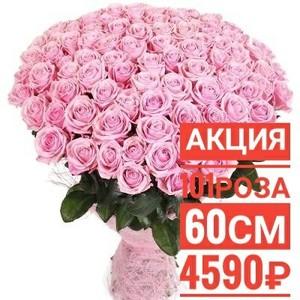 101 розовая роза 60 см крупный бутон. По Вашему желанию цвет может быть изменён.
