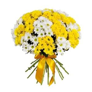 Н-028 Букет 21 куст хризантема с атлас лентой