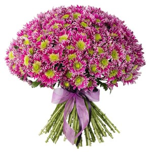 Н-022 Букет 35 куст хризантем Саба