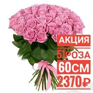 51 розовая роза Эквадор 60 см крупный бутон. По Вашему желанию цвет может быть изменён. 51 красная роза Эквадор 60 см крупный бутон. По Вашему желанию цвет может быть изменён.