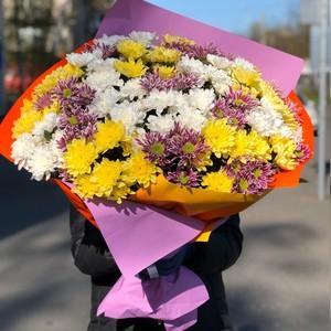 Букет кустовая хризантема микс 25шт в оформлении № ВС 010