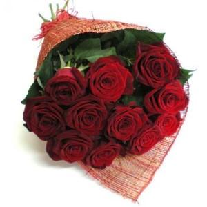 Роза Эквадор Premium 11 шт 60 см в оформленинии