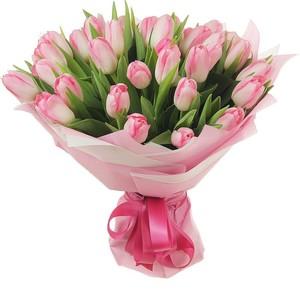 т-047 Букет бело-розовых тюльпанов 25 шт. в упаковке