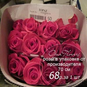 Розы в пачке от производителя   высота 70 см  ар.RO-014