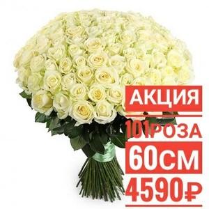 """101 роза """"Мондиаль"""" 60 см крупный бутон. По Вашему желанию цвет может быть изменён."""