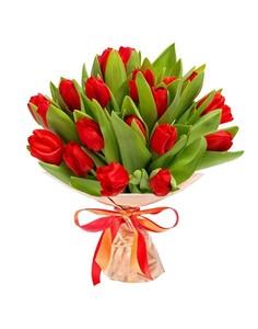 Тюльпаны 25шт №ТУ34