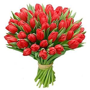 Букет красных тюльпанов 51 шт. в оформлении лента