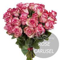 Букет из  25  роз  Карусель  60 см