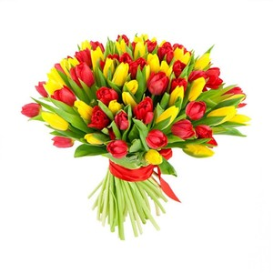 Тюльпаны 75шт. №ТУ016
