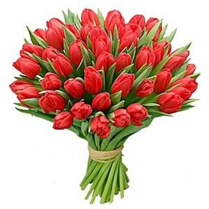 Тюльпаны 41 шт. №ТУ018