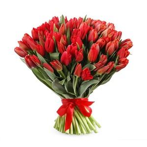 Тюльпаны 51шт №ТУ45