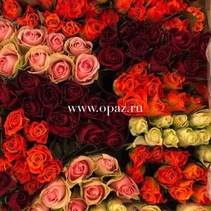 Роза Кения 40см 39руб от 20шт