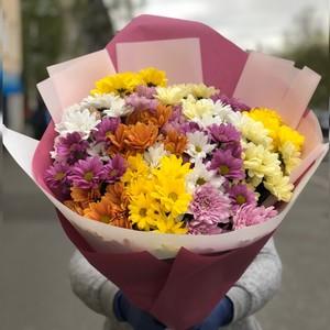Букет кустовая хризантема микс в оформлении № ВС 012