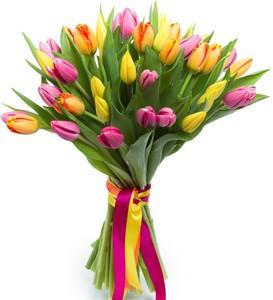 Тюльпаны 35шт №ТУ29