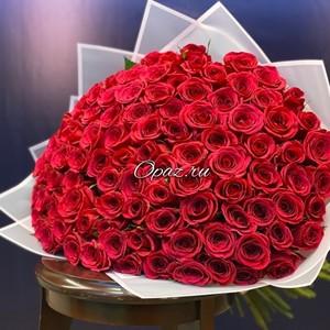 101 роза Голландия Premium в оформлении № РС-076 Роза 50см