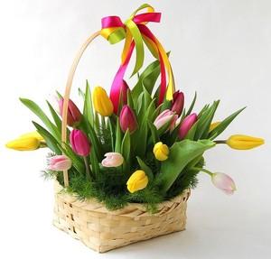 Тюльпаны 21 шт. микс в корзине с декором