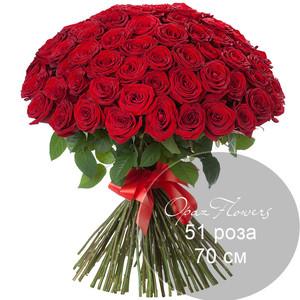 51 красная роза 70 см под ленту