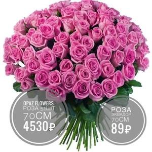 51 розовая роза Эквадор 70 см.крупный бутон. По Вашему желанию цвет может быть изменён.