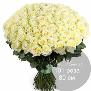 101 белая  роза 80 см под ленту