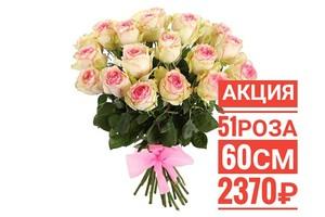 """51 роза """"Эсперанса"""" Эквадор 60 см крупный бутон. По Вашему желанию цвет может быть изменён. 51 красная роза Эквадор 60 см крупный бутон. По Вашему желанию цвет может быть изменён."""