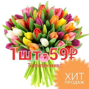 Тюльпаны цена за шт.