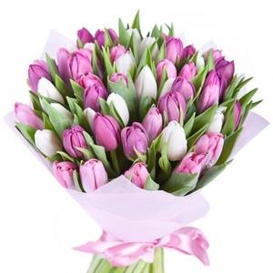 Тюльпаны 51 шт № ТУ010