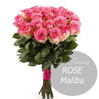 """Букет из 25 роз """"Малибу"""" 60 см"""