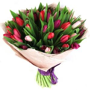 Тюльпаны 41 шт. №ТУ022