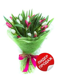 Тюльпаны 25шт №ТУ31