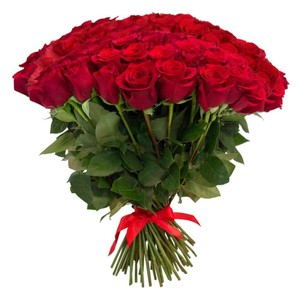 51 красная роза 60 см. Акция