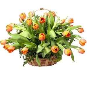 Тюльпаны 35 шт. в корзине, декор лист папоротника