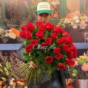 51 роза Голландия Premium 50см №РС-103