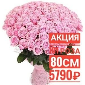 101 розовая роза 80 см крупный бутон. По Вашему желанию цвет может быть изменён.