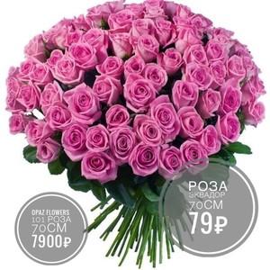 101 розовая роза Эквадор 70 см крупный бутон. По Вашему желанию цвет может быть изменён.