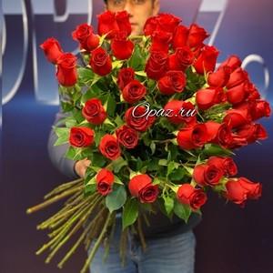 51 роза Голландия Premium 70см №РС-118