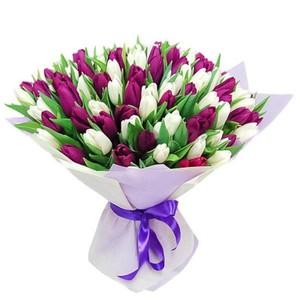 т-064 Букет тюльпанов 55 шт. в упаковке