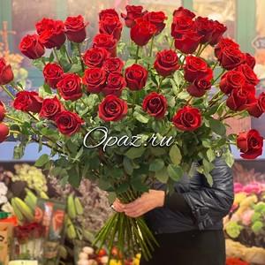 51 роза метровая Эквадор Premium №РС-117