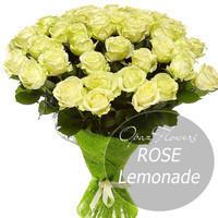 """101 роза 50см Эквадор Premium """"Лимонад"""""""