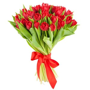 Букет красных тюльпанов 35 шт. в оформлении лента