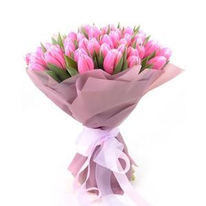 Тюльпаны 51шт №ТУ51